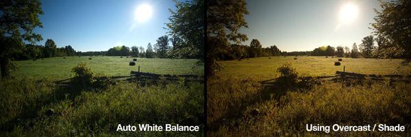 white-balance-2
