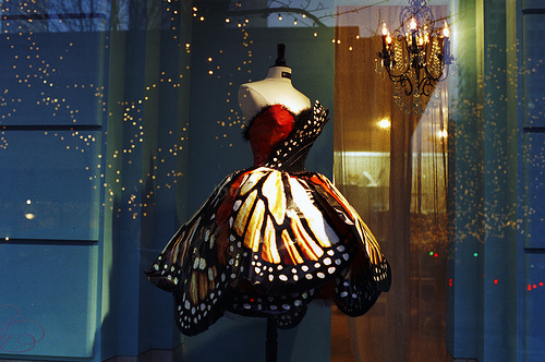 amazing-butterfly-dream-dress