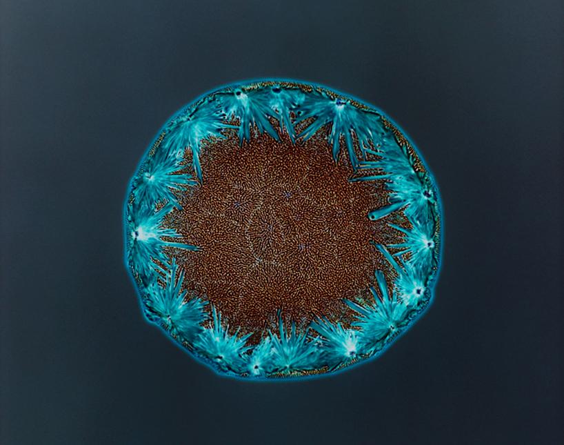 drugs-under-the-microscope-designboom05