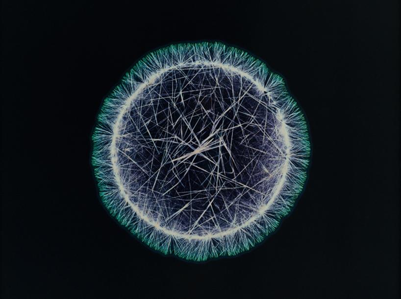 drugs-under-the-microscope-designboom12