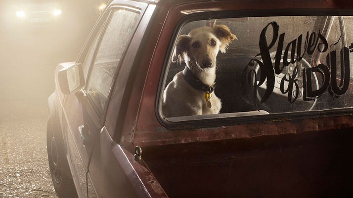 8-Martin-Usborne-The-Silence-Of-Dogs-In-Cars-yatzer