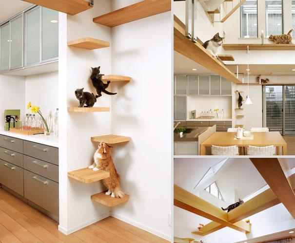 furniture-design-for-pet-lovers-17