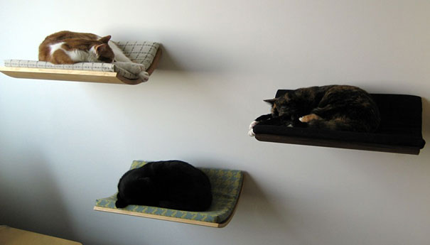 furniture-design-for-pet-lovers-8-2