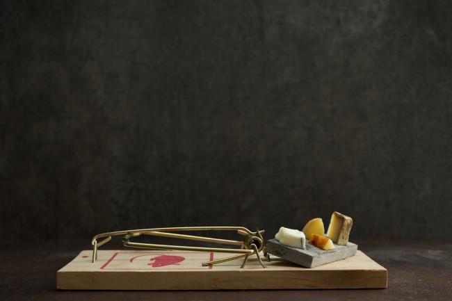 gourmet-mouse-traps-6-650x433