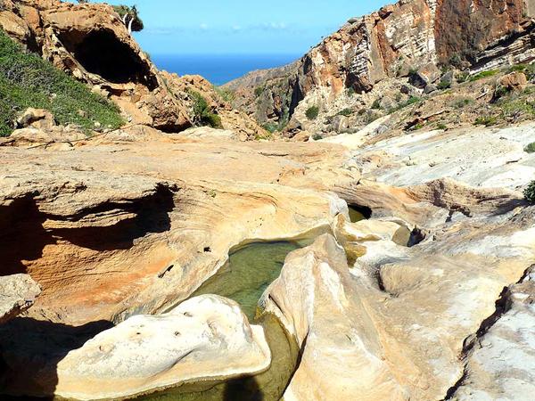 ostrov Socotra