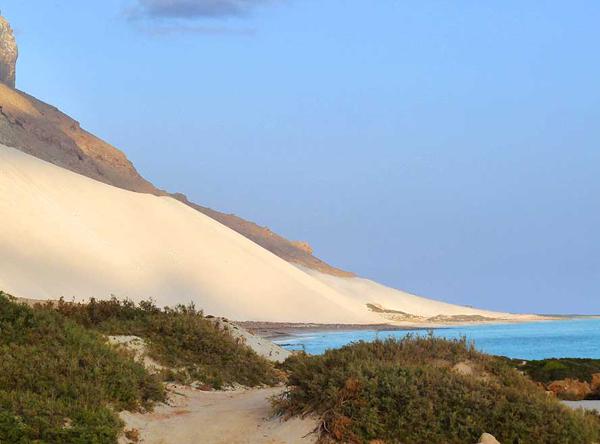 ostrov Socotra6