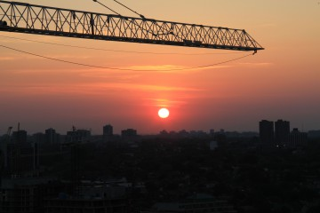 crane-sunset