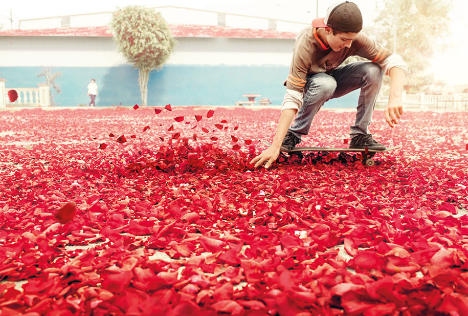 flower-petals-sony-4k-ultra-hd-advertisement-campaign-costa-rica-3
