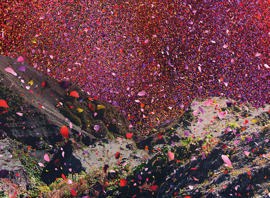 flower-petals-sony-4k-ultra-hd-advertisement-campaign-costa-rica-8