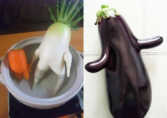 funny-vegetables-14_postcard