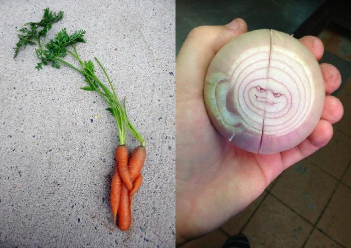 funny-vegetables-16_postcard