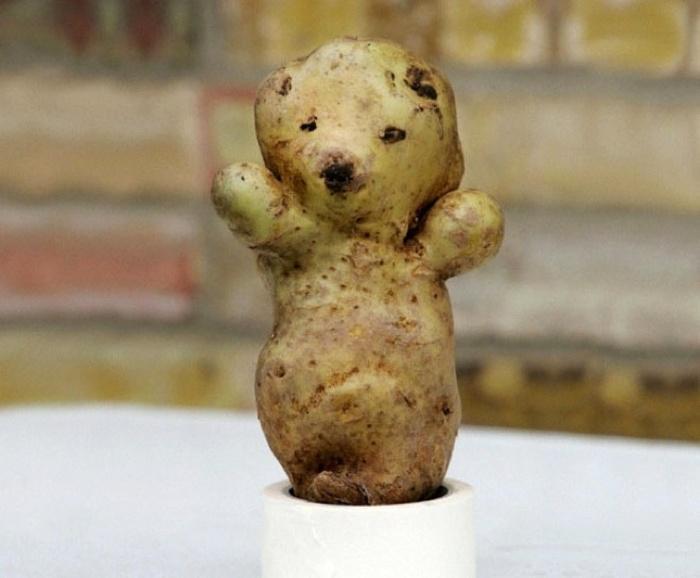 funny-vegetables-4