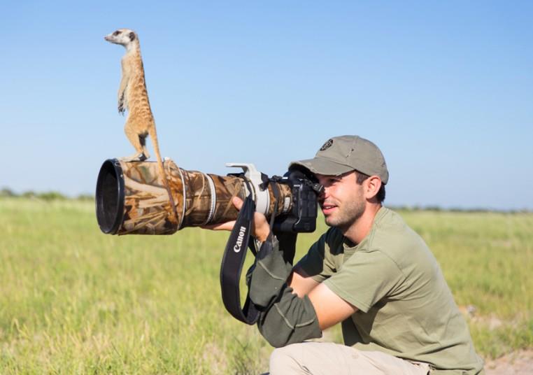 meerkat-10_2875885k
