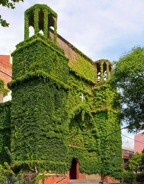 Zelený kostel, Argentina