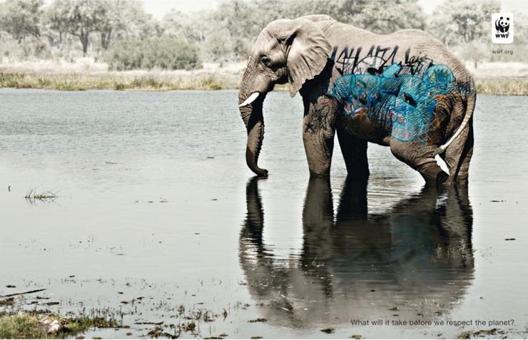 public-social-ads-animals-20