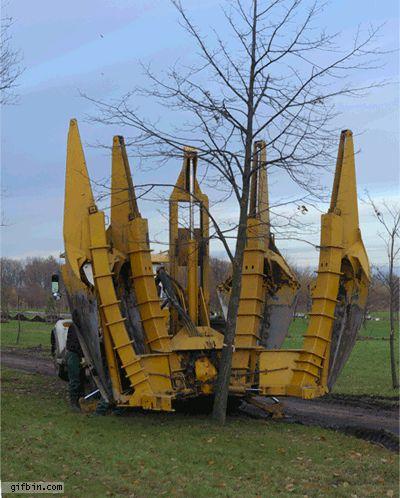 Vykopat strom už není žádný problém