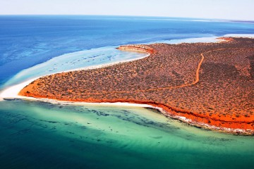 059.-Shark-Bay-Marine-Park-WA-courtesy-Australias-Coral-Coast