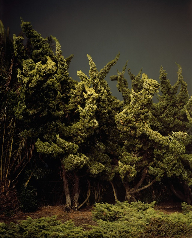 nightlandscapes-5