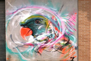 ptak uvodka