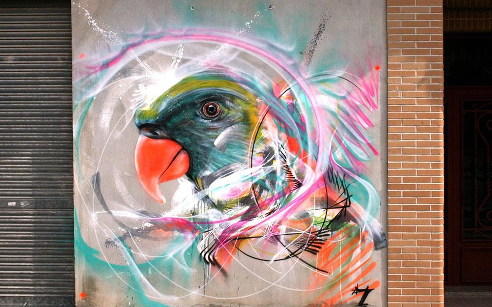 ptak4