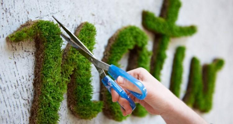 Moss-Graffiti-Moss-Natur
