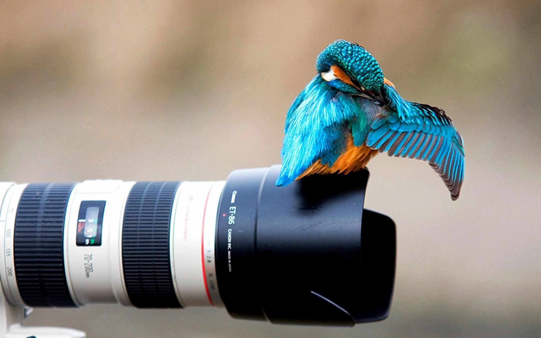You-Take-Off-Me-Photographer-1800x2880