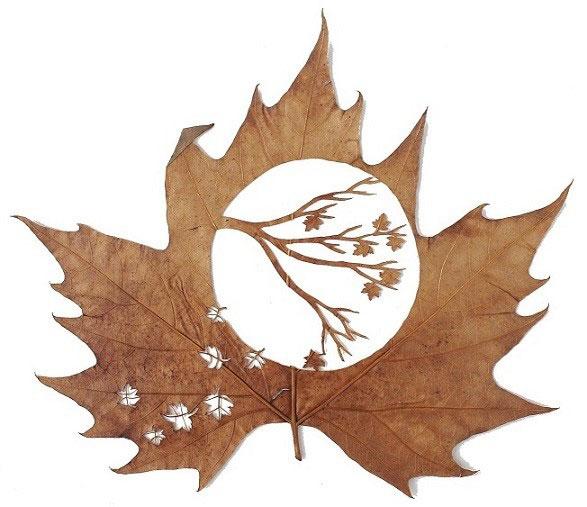 leaf-cutting-art-lorenzo-duran-15