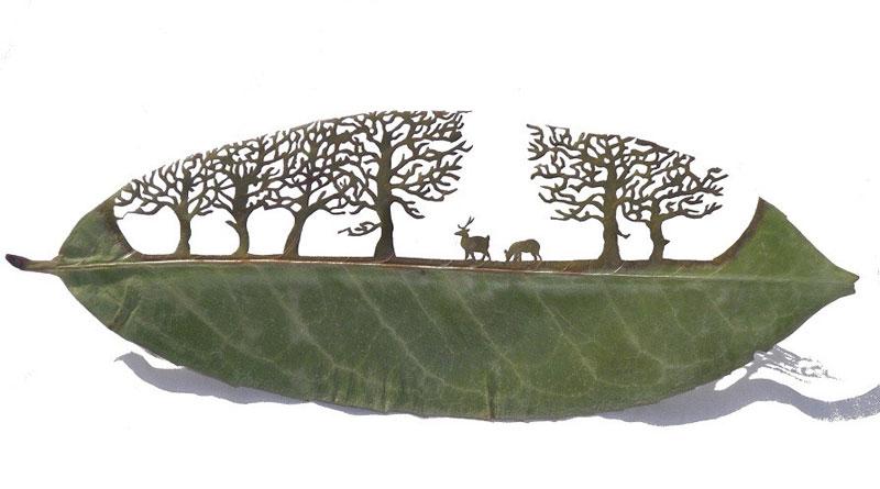 leaf-cutting-art-lorenzo-duran-6