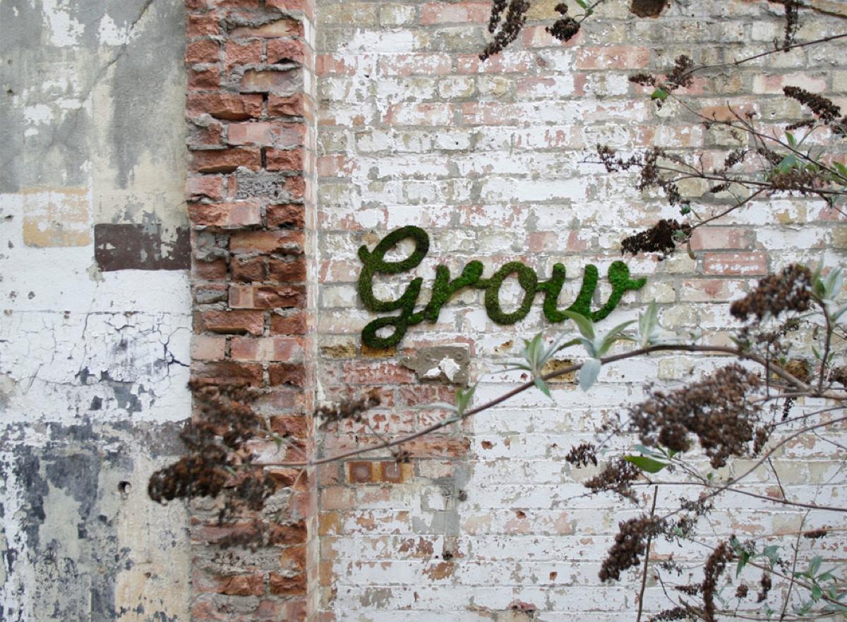 w_grow_3