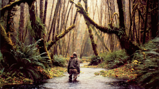 9-Drenched-in-Forks-Washington-by-Andy-Anderson