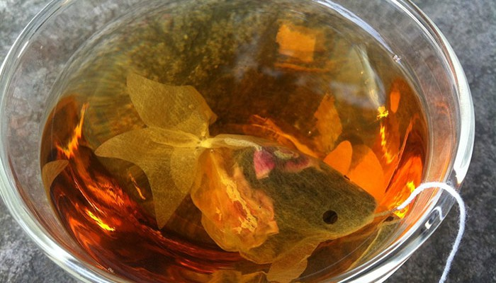 gold-fish-tea-bag-charm-villa-7