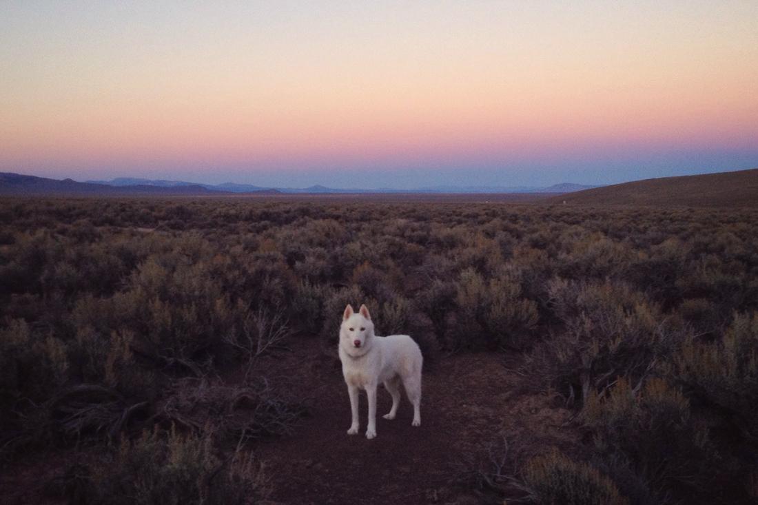 Nevada - nejosamělejší silnice v Americe