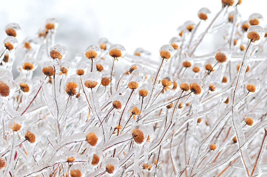 winter-art-see-the-most-amazing-ice-and-snow-formations-43642