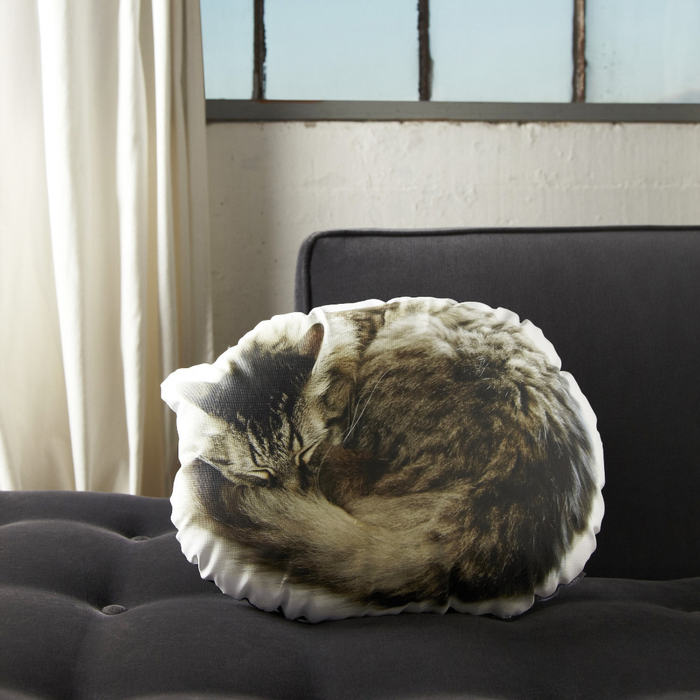Sleeping-Cat-Pillow-2-eef1ed9e-6226-45b0-a080-5848bb991614