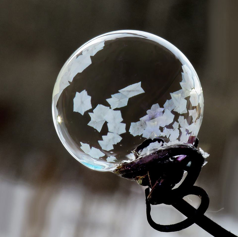 blowing-soap-bubbles-in-cold-weather-by-cheryl-johnson-1