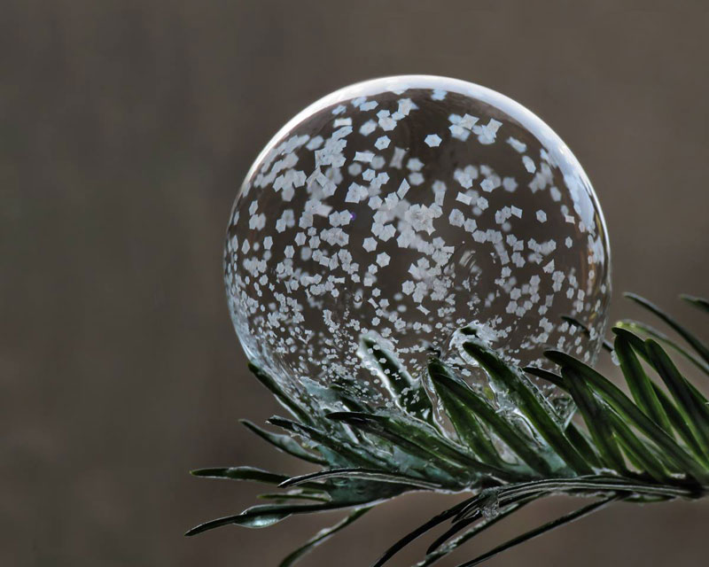 blowing-soap-bubbles-in-cold-weather-by-cheryl-johnson-3