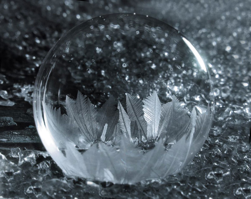 blowing-soap-bubbles-in-cold-weather-by-cheryl-johnson-8