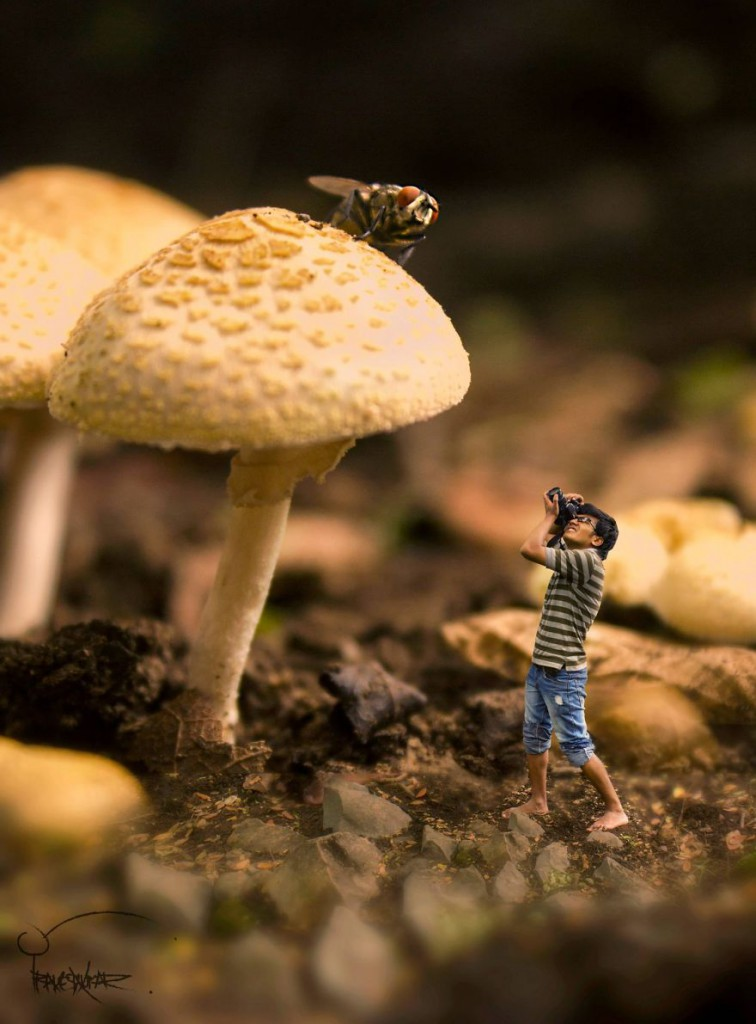 Miniature-Portraits-by-Nepal-Based-Photographer3__880