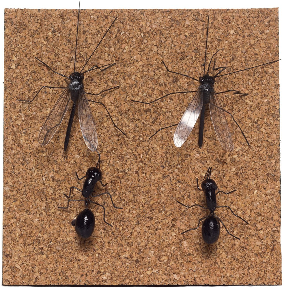 insect_push_pins_set_of_four