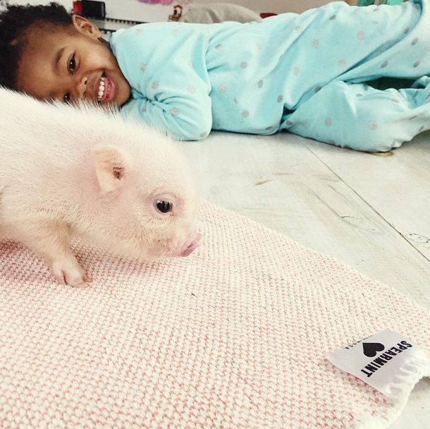 little-girl-piglet-friendship-libby-and-pearl-21