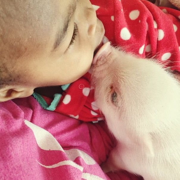little-girl-piglet-friendship-libby-and-pearl-22-605x605