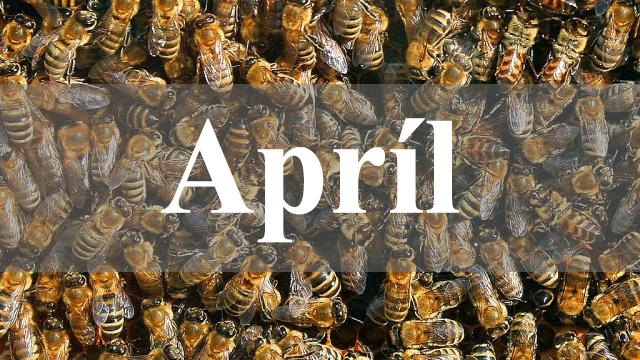 April vcely