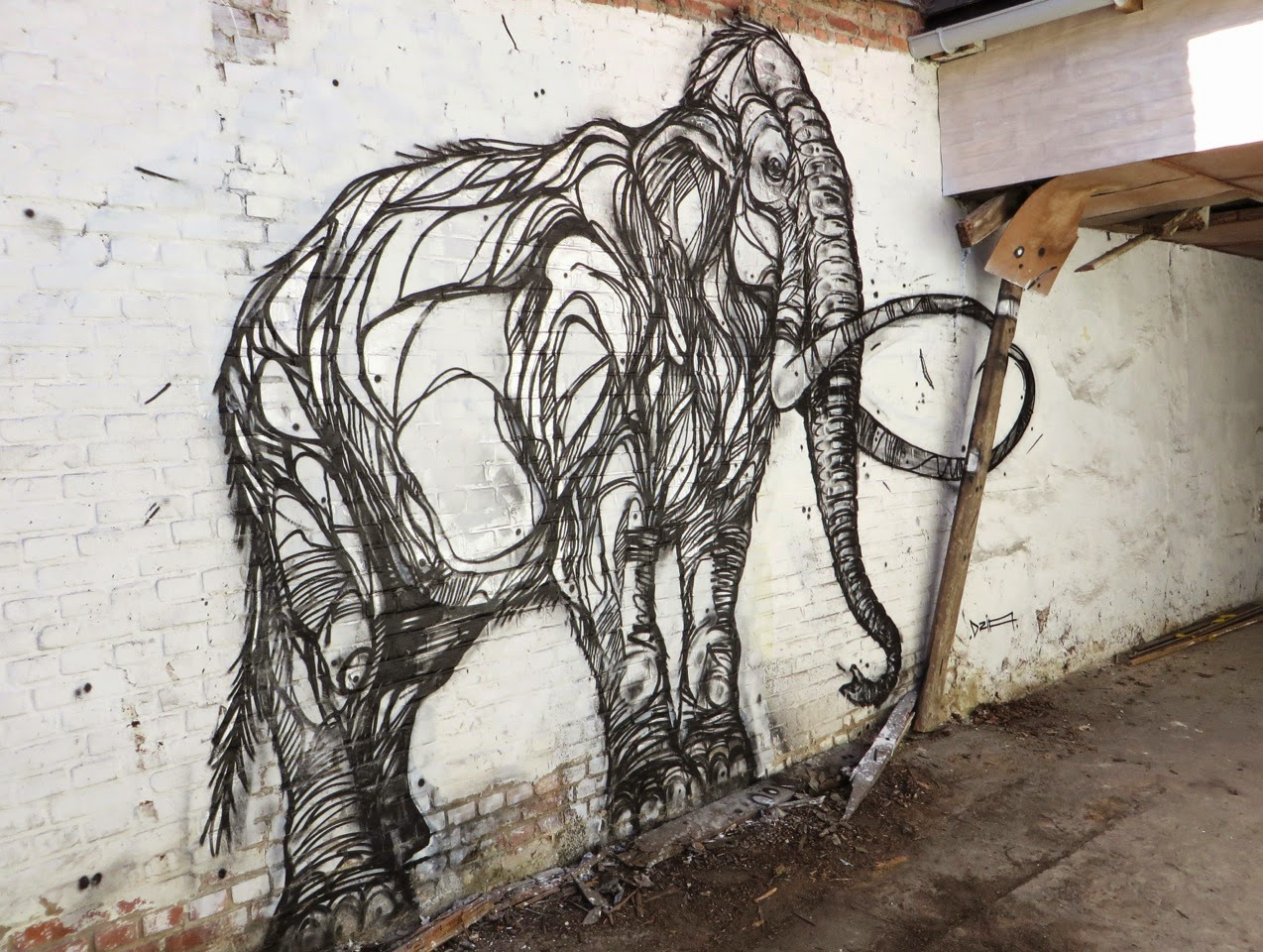 DZIA_CHROME_MAMMOTH_2015_01