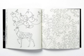 coloring-books-for-adults-johanna-basford-2__880
