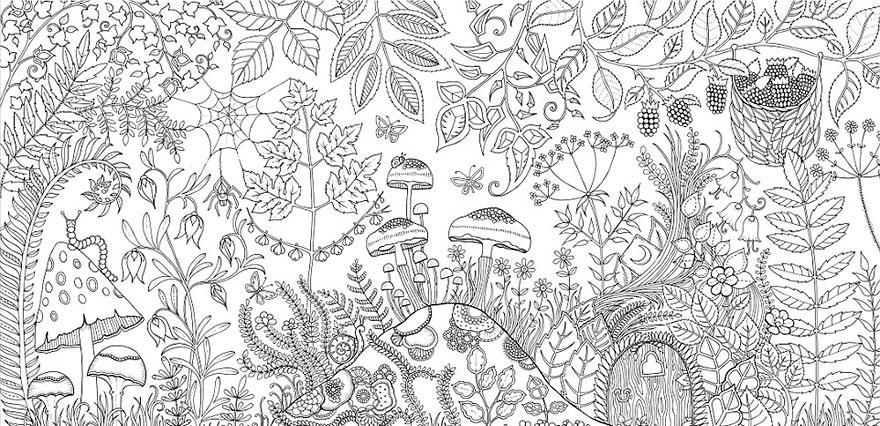 coloring-books-for-adults-johanna-basford-5__880