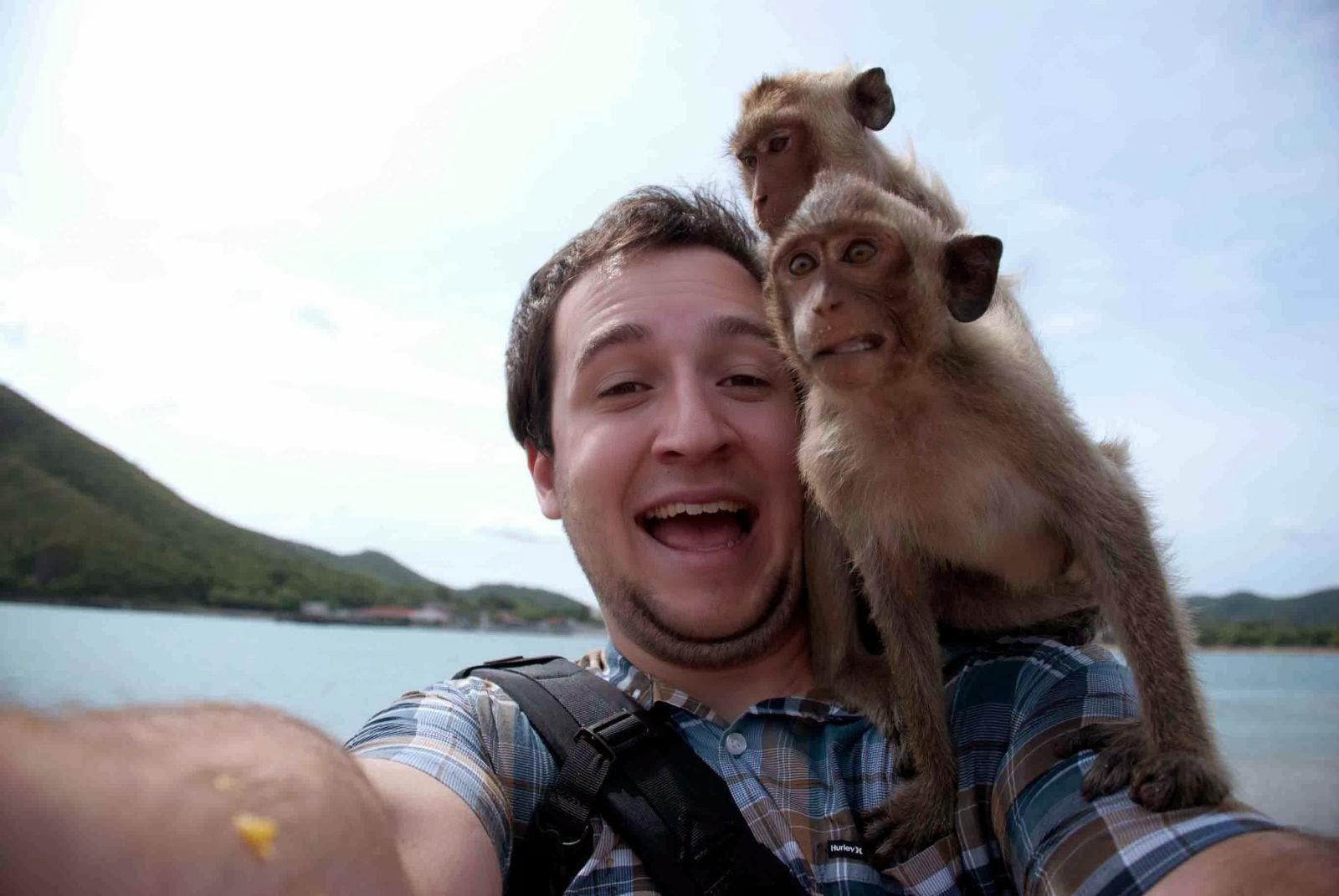 funny-animal-selfie-032