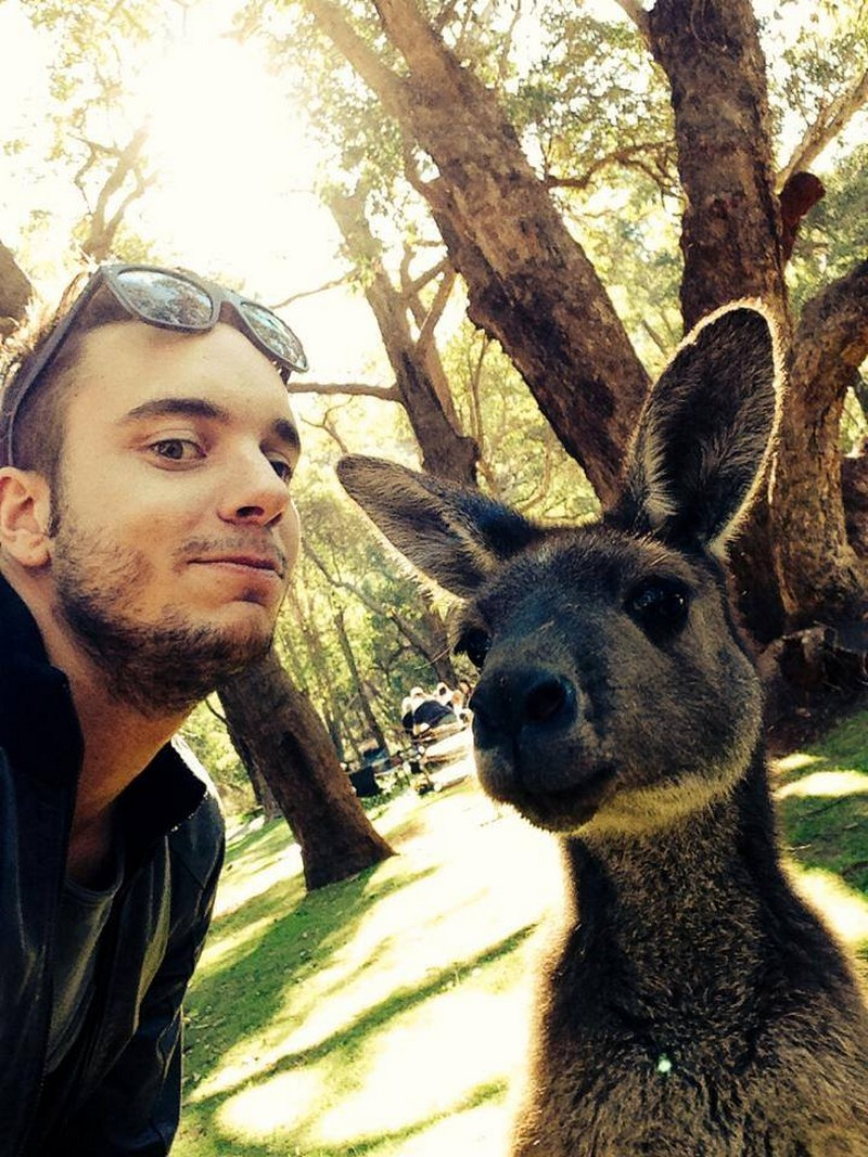 selfie-with-animals-03