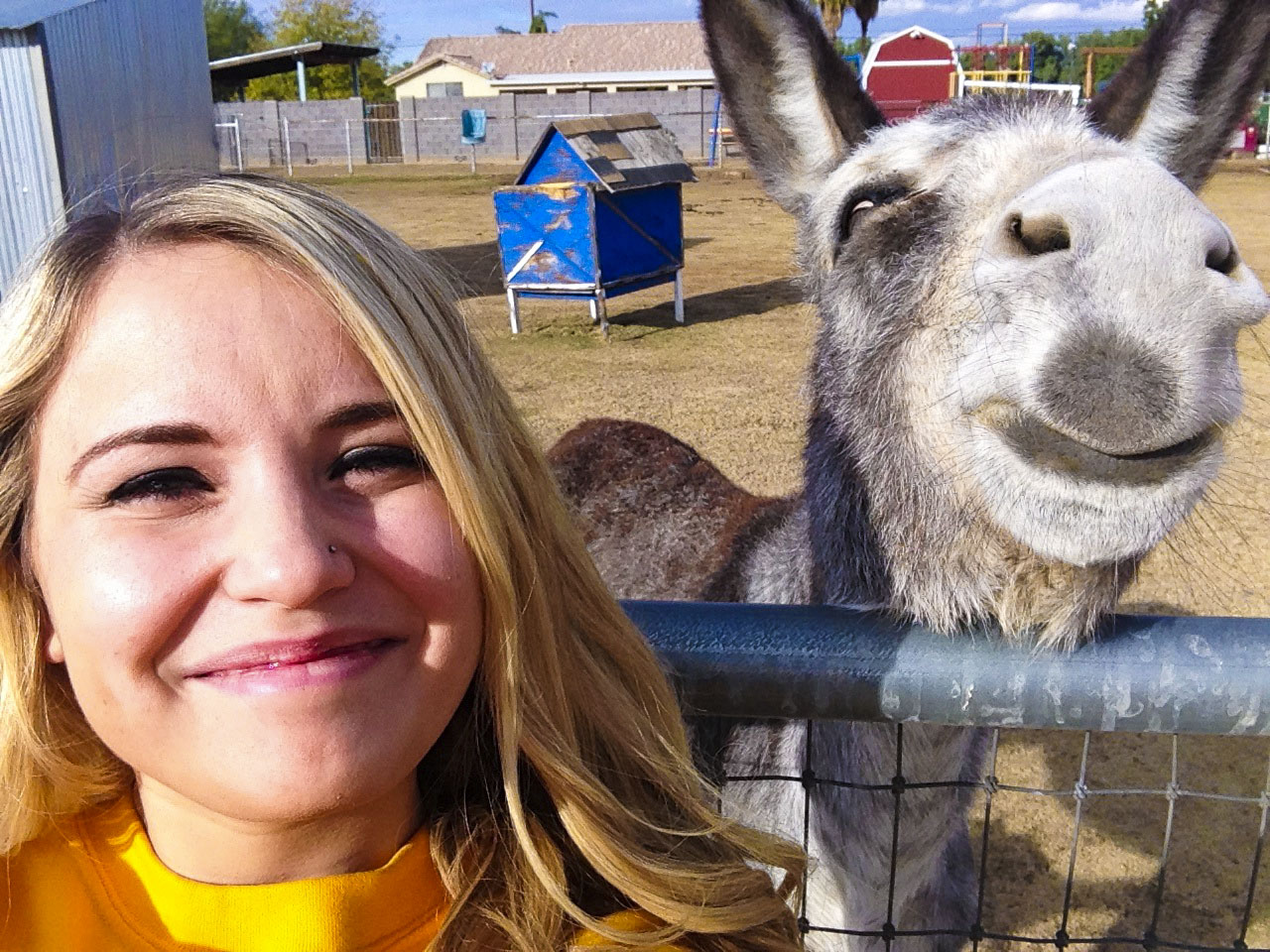 selfie-with-animals-8