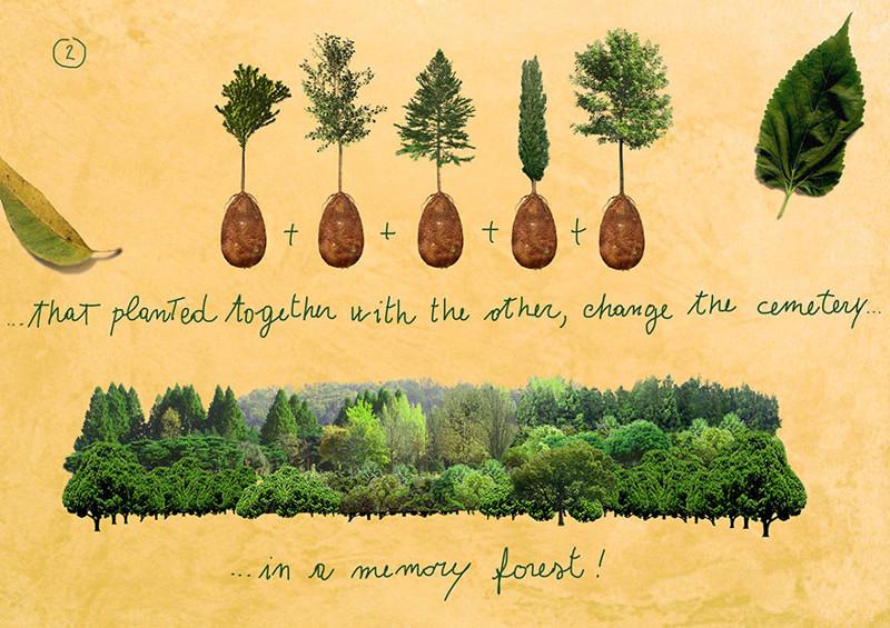 Koncepce památkového lesa