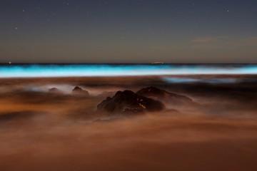 brava beach, uruguay, fotografie, zajímavosti